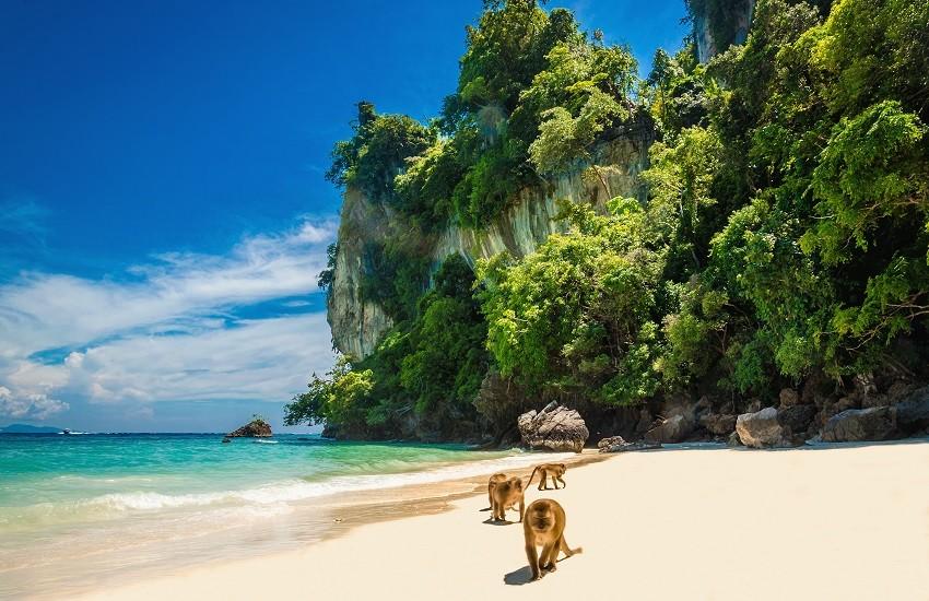Phi Phi Monkey Beach.