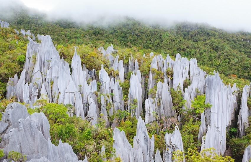 Borneo Gunung Mulu