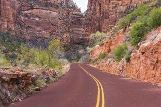 Zion National Park. Image credit: Thinkstock.