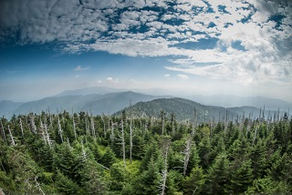 Great Smoky Mountains National Park, image by Thinkstock/iStock