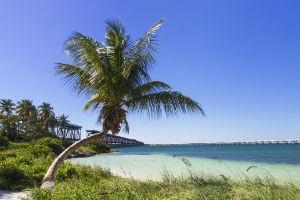 Bajia Honda Beach