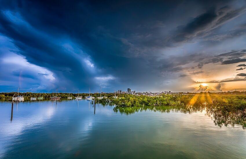 Darwin's Coast