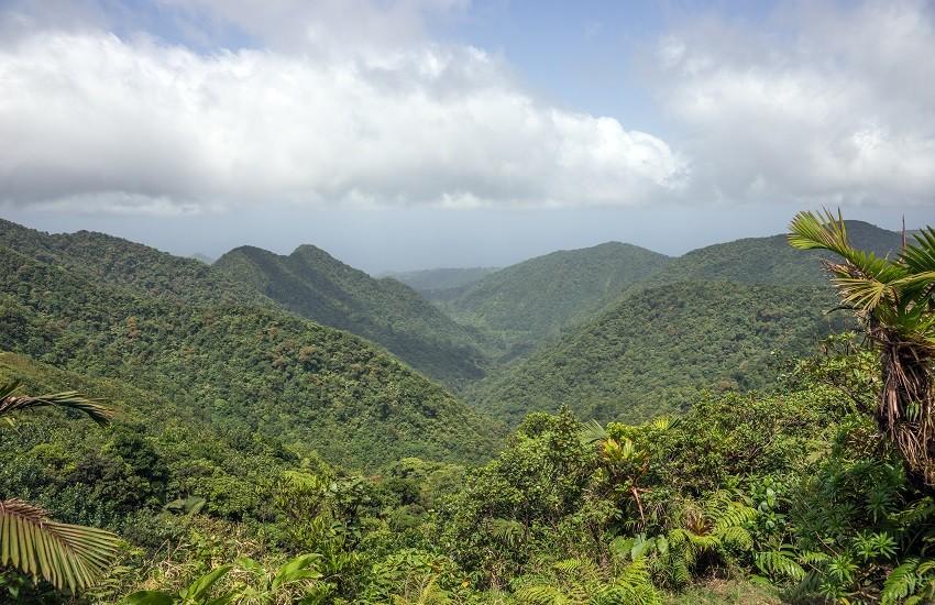Dominica Mountains