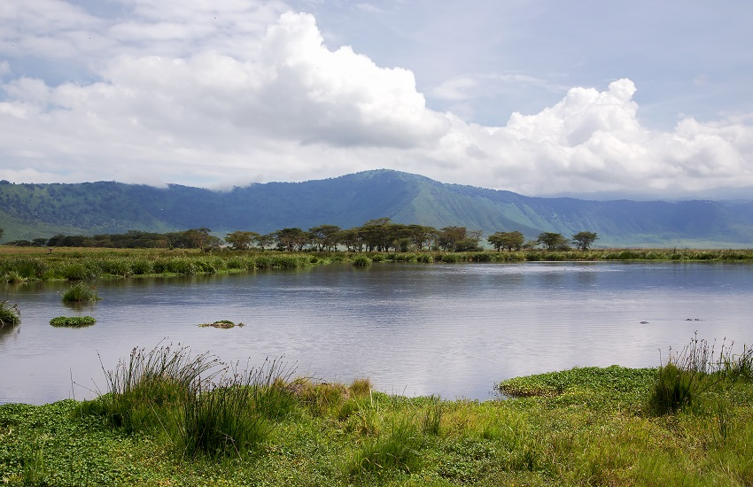 Lake Manyara Landscape