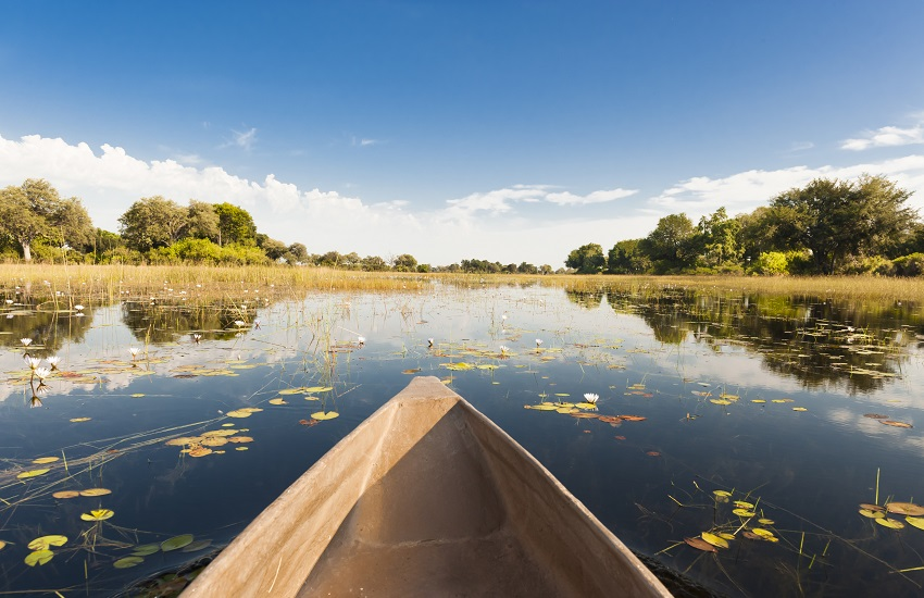 Okavango Delta Canoe