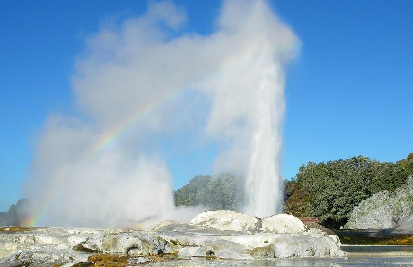 Pohutu Geyser, Rotorua