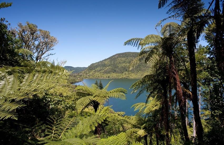 Rotura Lake