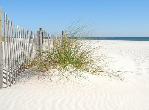 Orlando Florida Beach